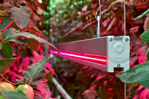 LED interlighting - image:Phillips