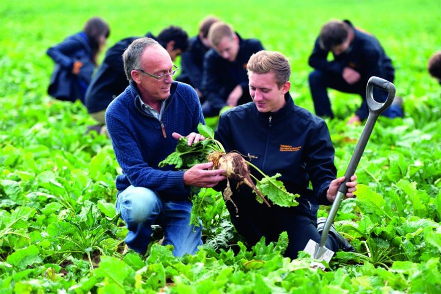 Apprenticeships: Norfolk-based organic vegetable producer Taylorgrown participating in Sainsbury's programme
