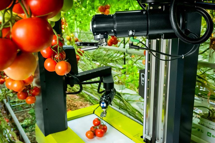 Glasshouse robotic technology - credit: Ridder