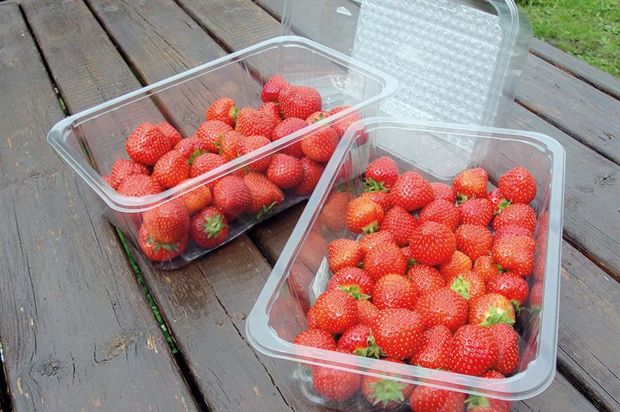 Strawberry punnets: Holfeld's K80 range meets requirement for top sealing and is laterally vented to reduce condensation - image: Holfeld Plastics