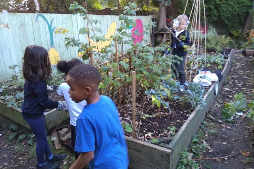 Noa Garcia, Tiana Belle, Shayon Lokko and Rose Wilson cutting down the spent raspberry canes - credit: Triangle Adventure Playground