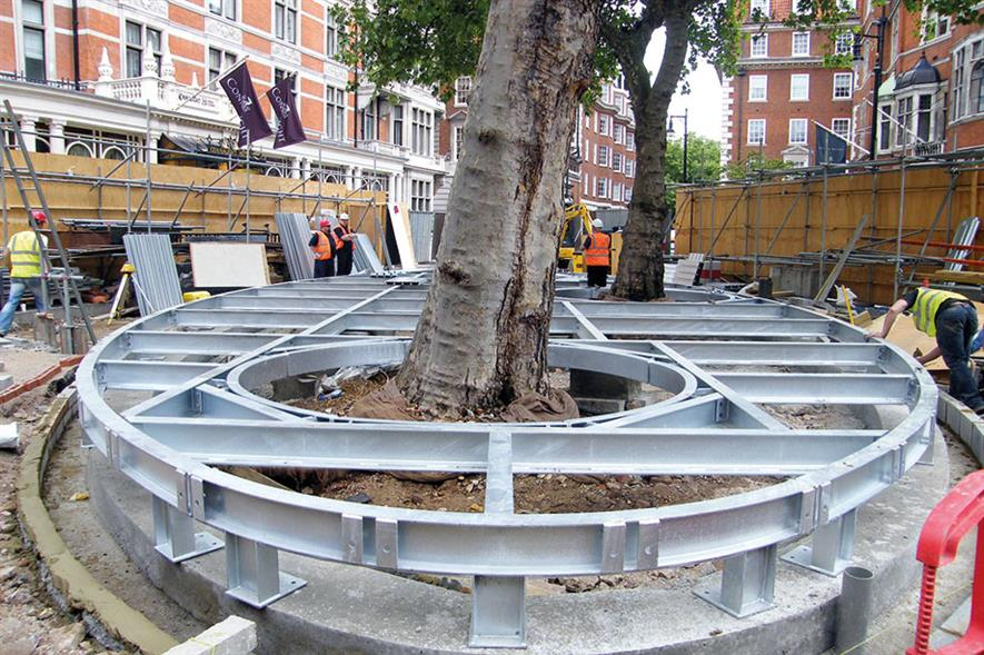 Image: Barrell Tree Consultancy