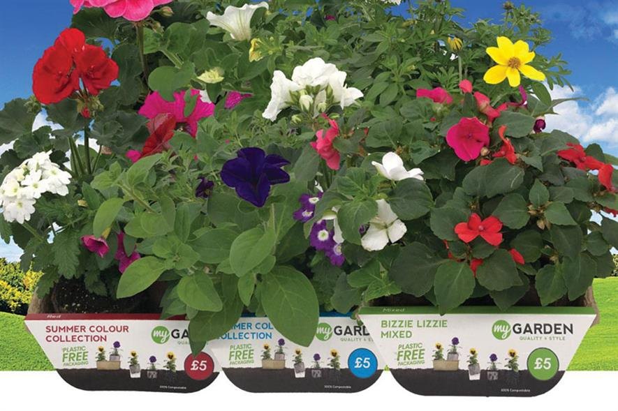 MyGarden: ECO3 recyclable board used for The Range's plastic-free bedding plants - image: Hortipak