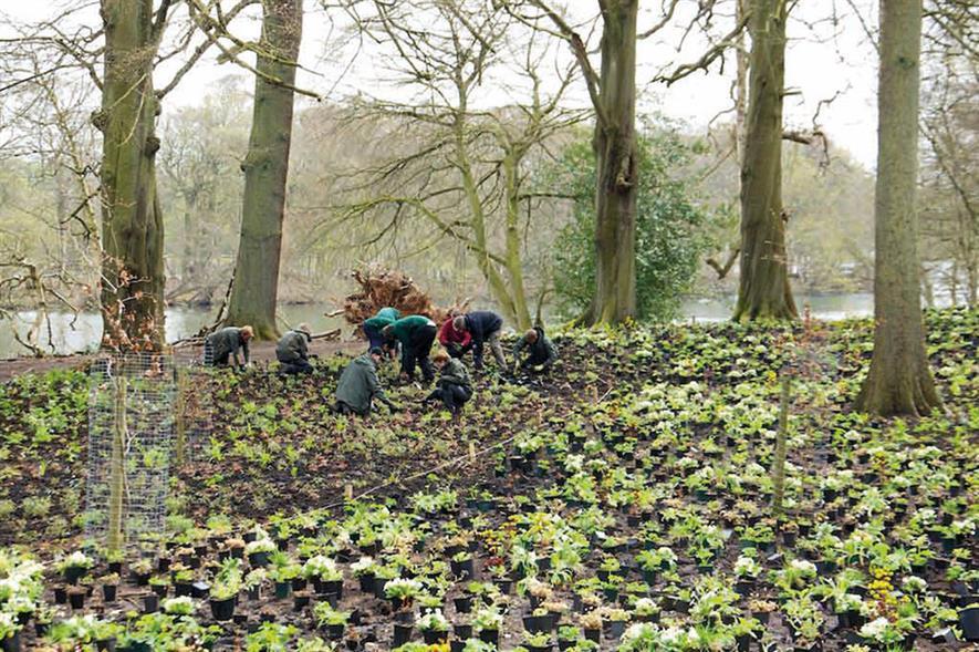 Image: Trentham Gardens
