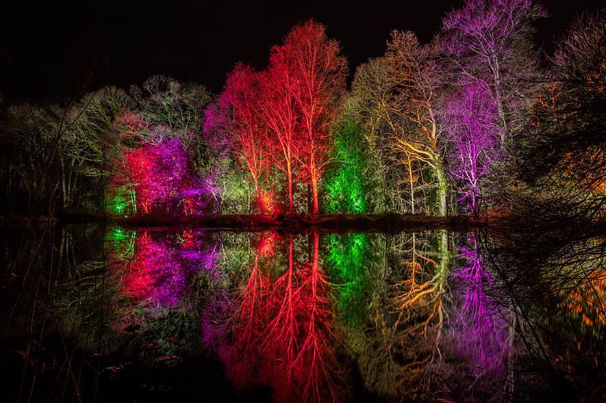 Glow 2019 at RHS Garden Rosemoor - credit: RHS