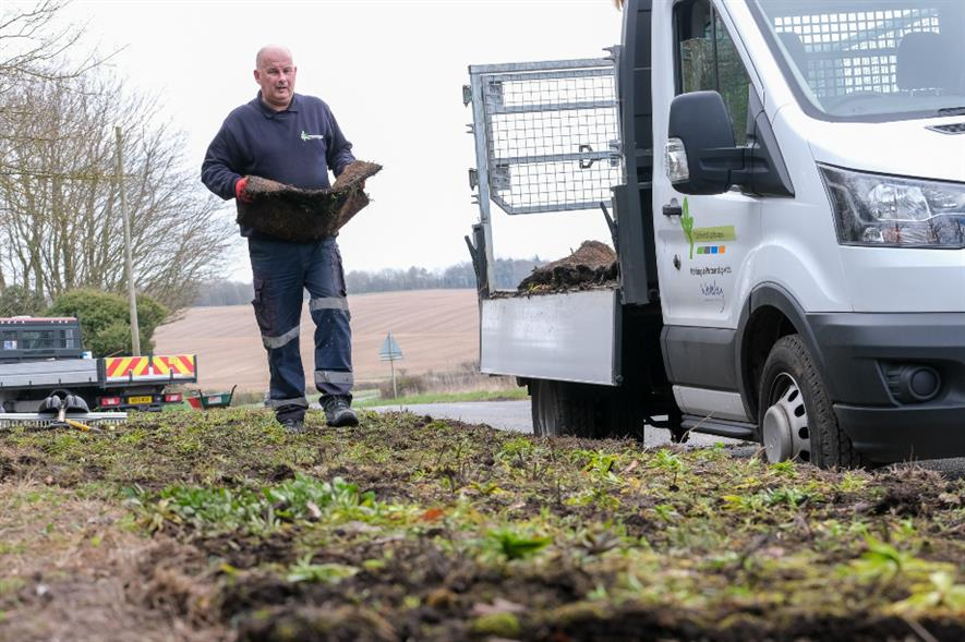 The wildflowers will enhance roundabouts and verges at three West Berkshire locations - credit: Wildflower Turf