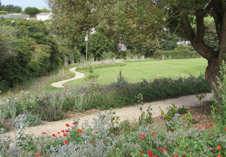 One of the improved areas in Trenoweth. Image: Wildflower Turf