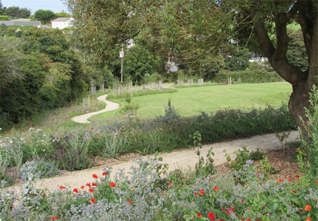 Wildflower Turf worked with Cornwall Council on its £3.5m Green Infrastructure for Growth project. Image: Wildflower Turf