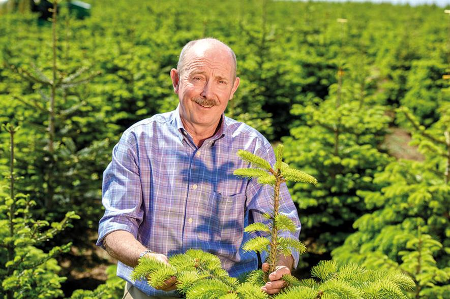 William Rose, Owner, Fillingham Christmas Trees - image: Fillingham Christmas Trees