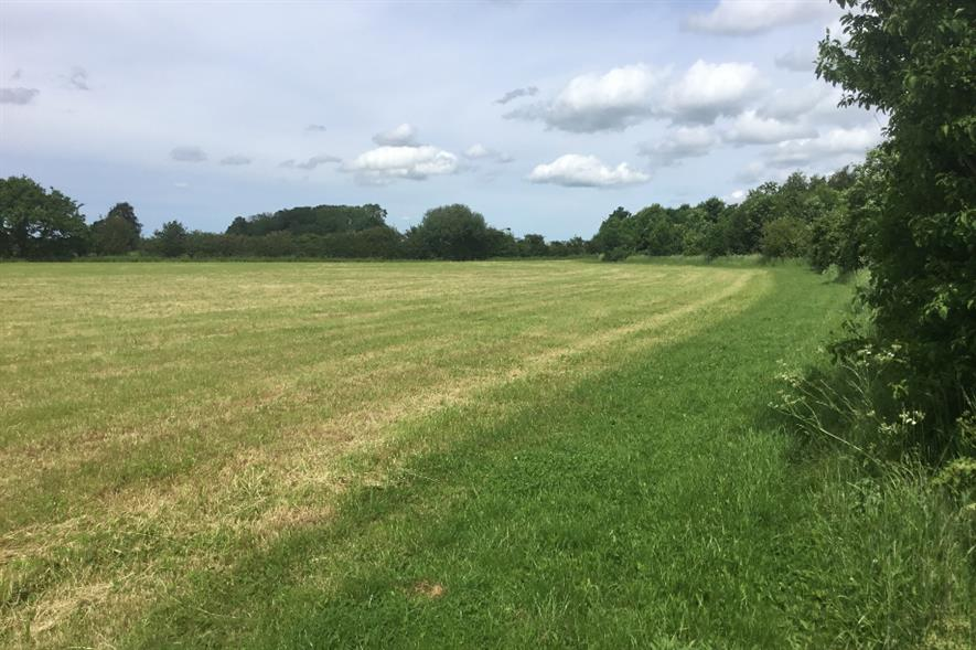The woodland are to be planted in Kettlethorpe, near Lincoln - credit: Hortifeeds