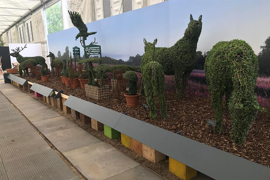 Agrumi's New Forest topiary display at RHS Chelsea Flower Show 2021