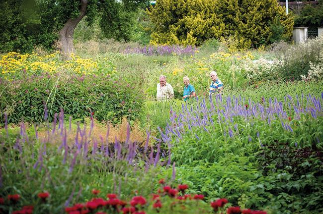 Winner: Trentham Gardens