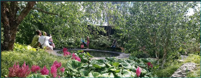 Matthew Childs' Hampton Court Smart Meter garden