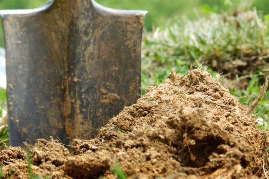 Planting.  Image: MorgueFile