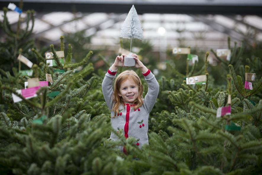 Dobbies Garden Centres Sees Christmas Sales Uplift Horticulture Week
