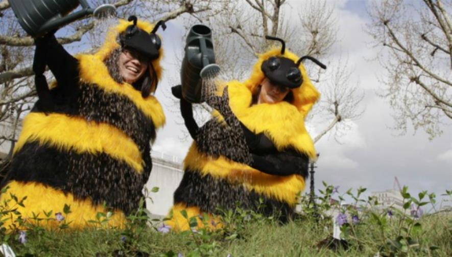 Friends of the Earth bee campaigners