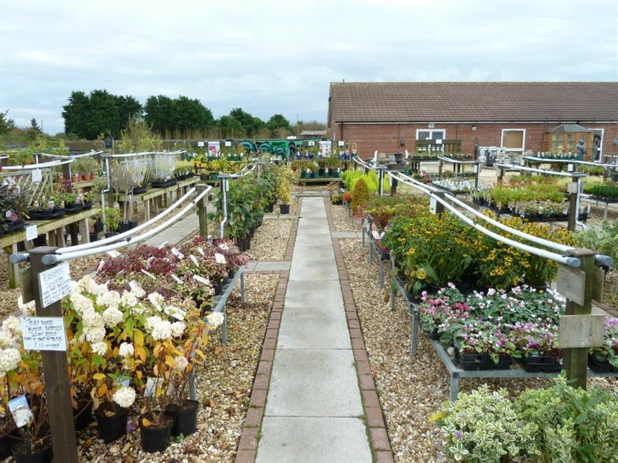 Pic: Chapel Garden Centre
