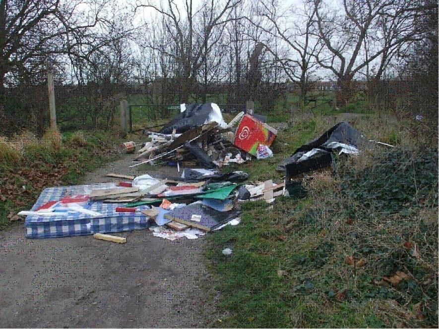Some of the rubbish dumped on Wanstead Flats