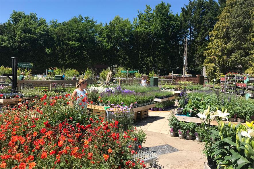 Plantarea sales good in July