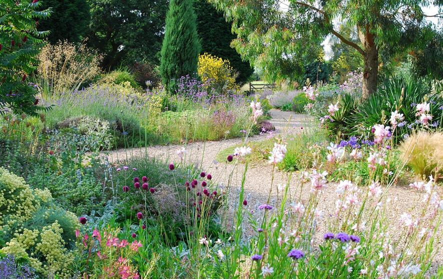Beth Chatto garden