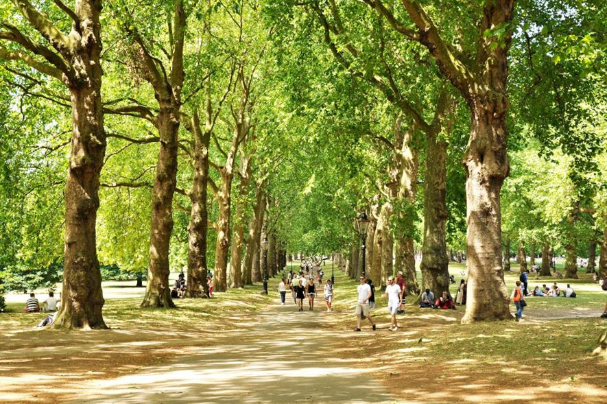 Green Park is one of eight sites managed by The Royal Parks - credit: Pixabay