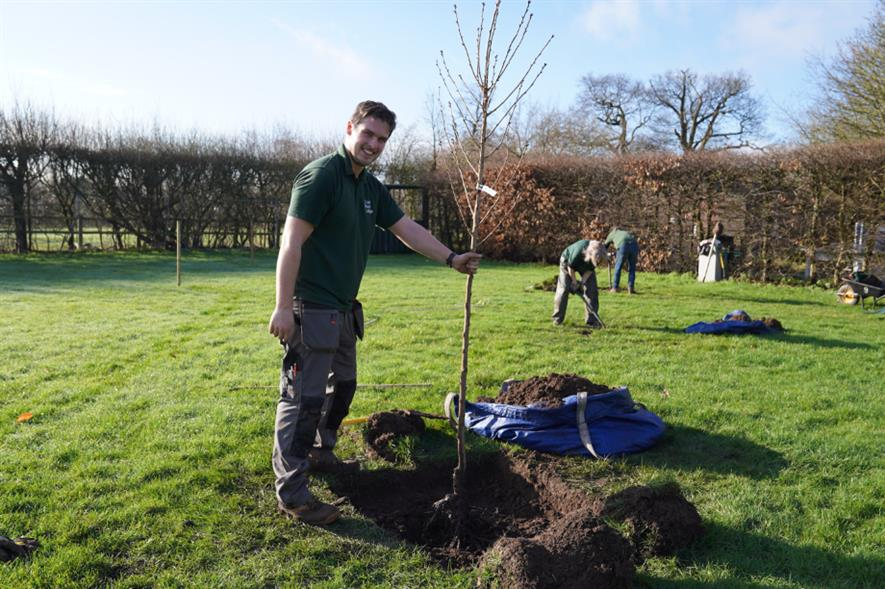 The college was gifted the trees as part of the Sakura Cherry Tree Project - credit: Capel Manor College