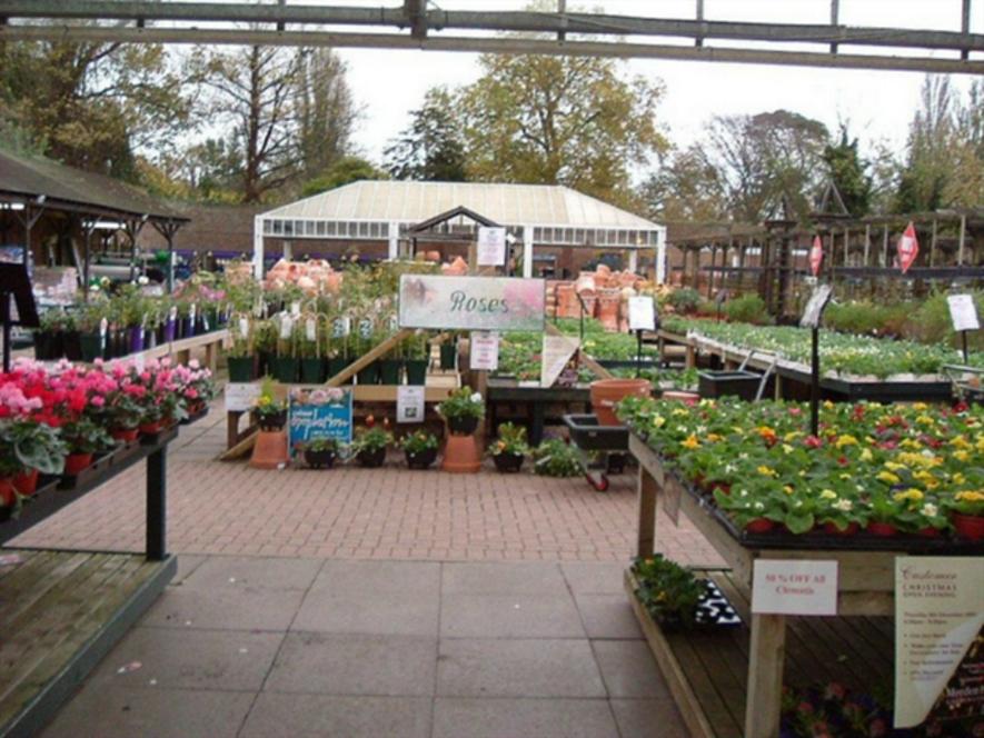 Morden Hall Garden Centre
