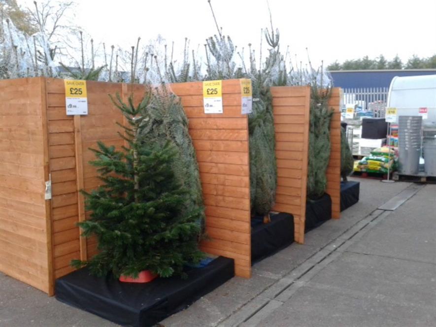 JTF Kidderminster £9.99 trees
