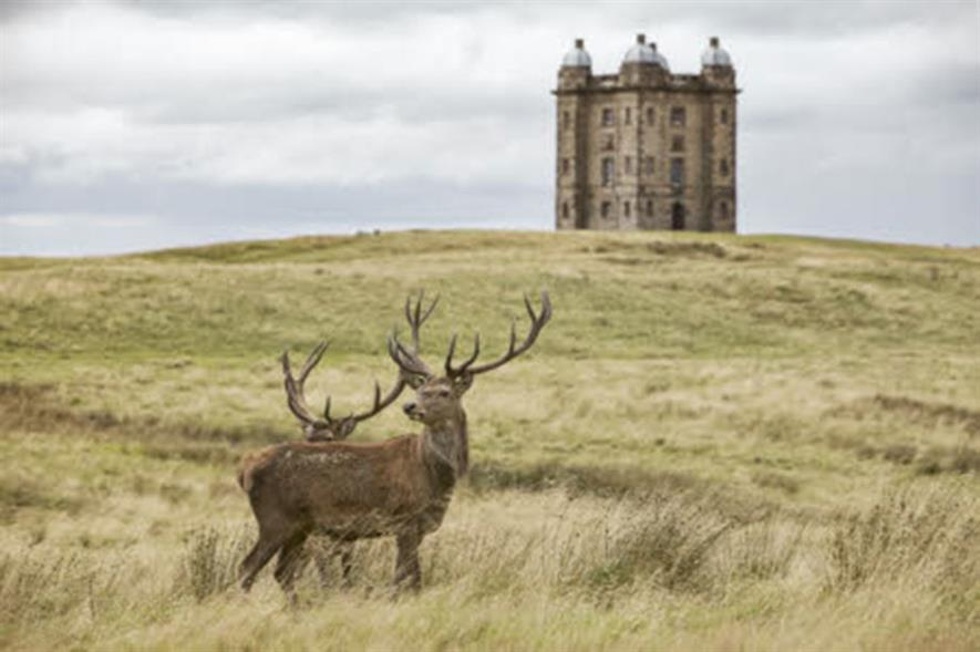 Deer in the grounds of Lyme Park, House and Garden, Cheshire.- credit: ©National Trust Images/Arnhel de Serra