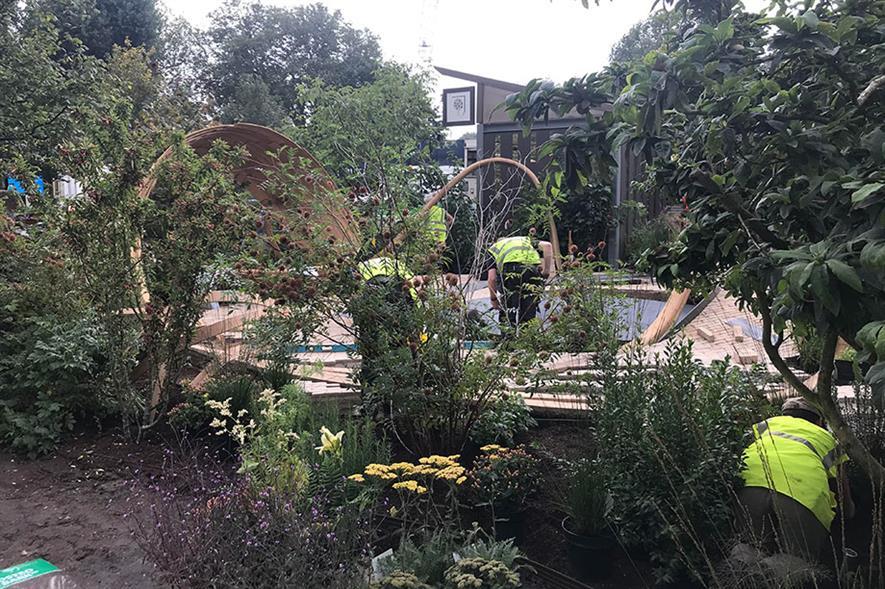 One Show garden