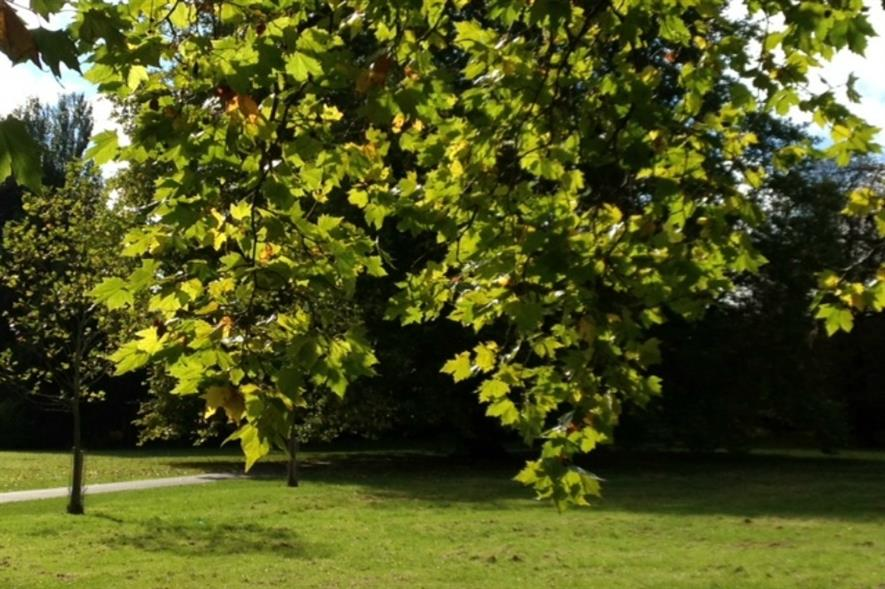 The conference will look at ways of funding green space
