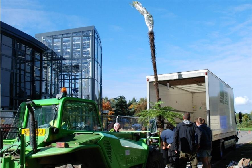 Tree ferns being unloaded. Image: Pershore College
