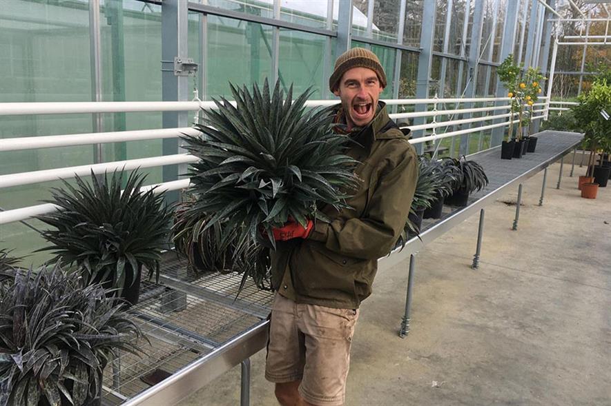 Mark Tuson of RHS Garden Wisley - credit: Wyevale Nurseries