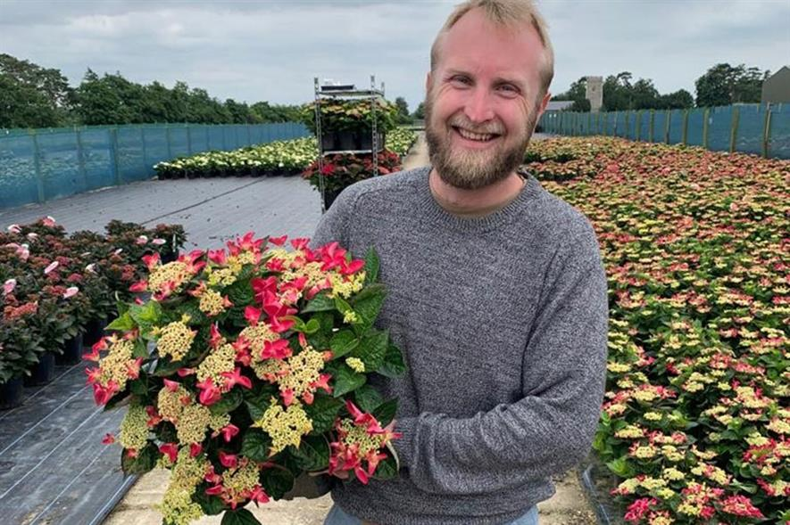 Richard Nuttall, crop protection manager, Viking Nurseries - credit: Viking Nurseries