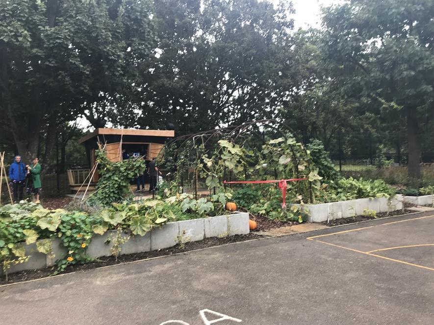 Cleve West-designed Battersea school garden