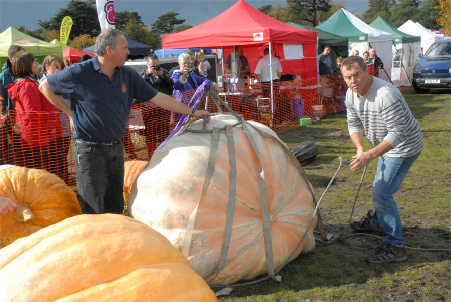 Pinetops Paton brothers with their pumpkin