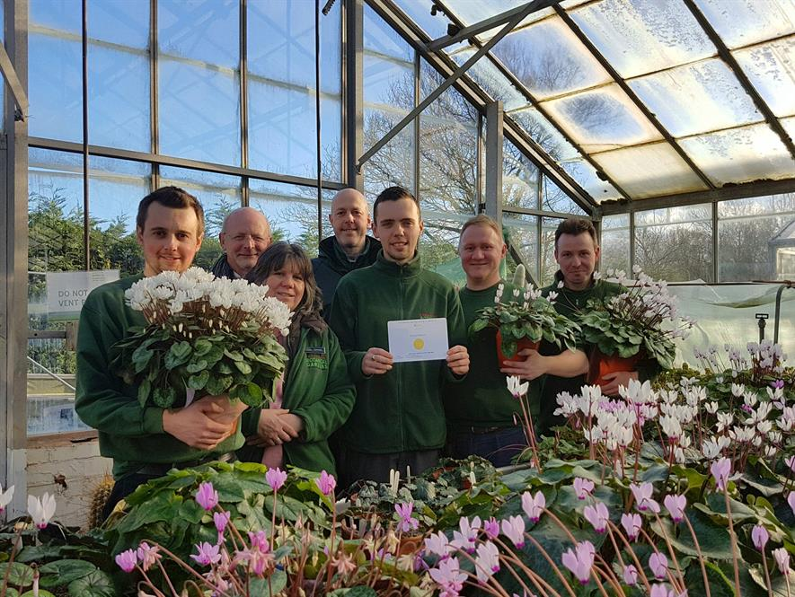 Birmingham Botanical Gardens gardeners won gold for win gold for their National Collection of Cyclamen