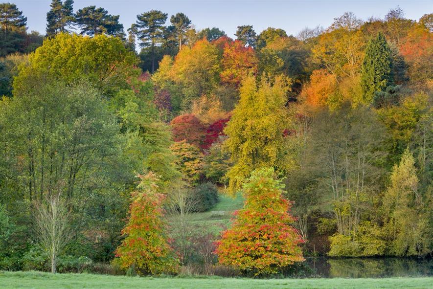 Winkworth - credit: National Trust