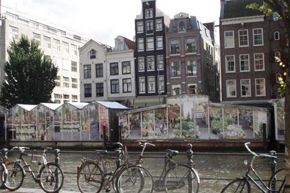 Amsterdam: CitySavvy's Benelux base