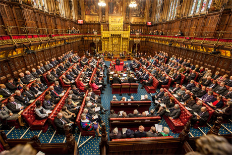 Institution: Plans to reform the House of Lords collapsed in August