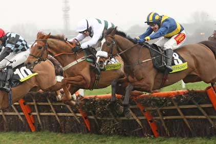 Newbury: jumps up to the mark