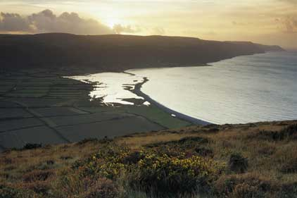 Field work: Land Trust aims to protect the UK's open spaces