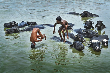 Photo competition: Children's Eyes On Earth