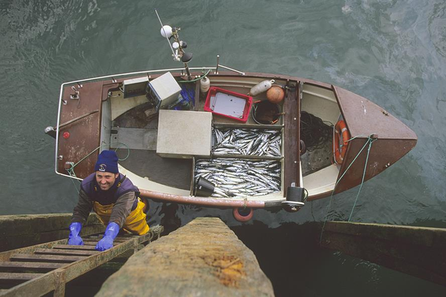 Connect will work on behalf of the UK fishing industry to lobby the Government to realise the benefits of Brexit (pic credit: Edward Parker/Alamy)