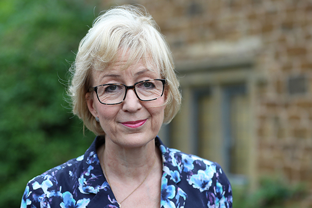 Andrea Leadsom: Her rise and fall from prominence has occurred at a dizzying pace