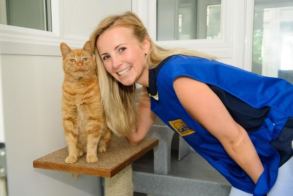 Celebrity support: Hollyoaks actress Carley Stenson opening a Cats Protection centre