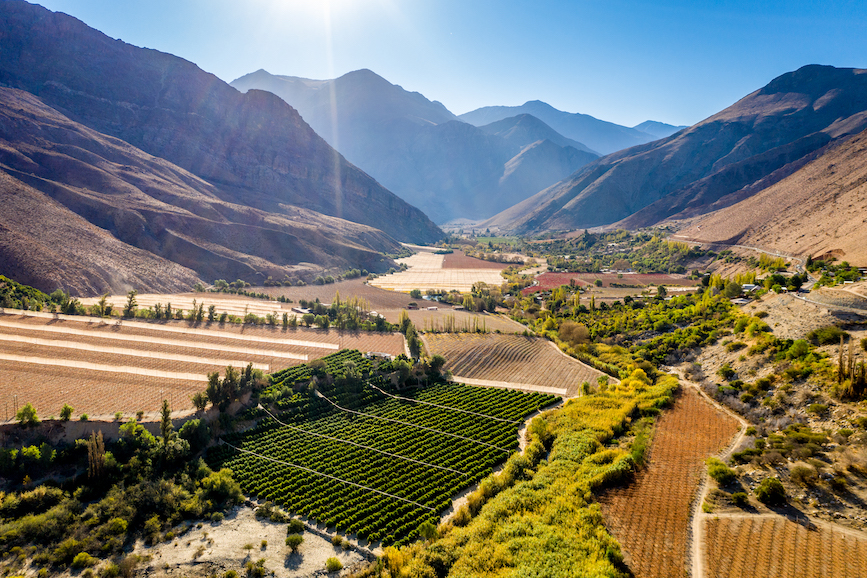 Chile's Elqui Pisco Valley. (Photo credit: Getty Images).