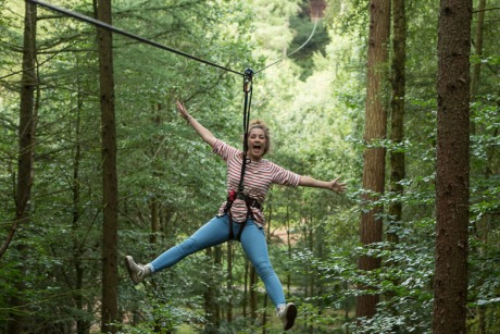 Go Ape: The forest adventure company has appointed The Red Consultancy
