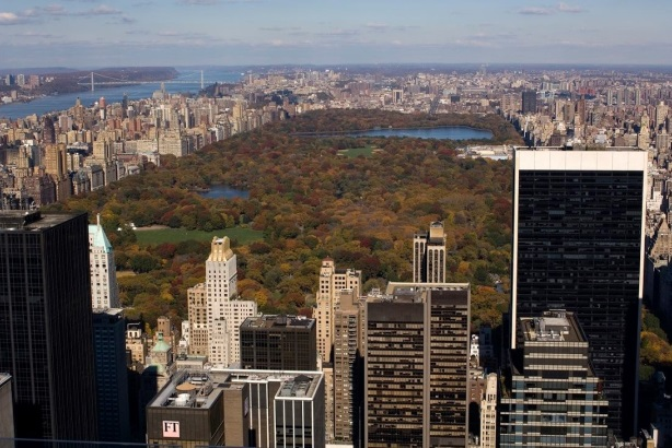 View of New York City's Central Park (Photo credit: Darren McGee for Empire State Development)