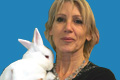 Rabbits: Britian's third-most popular pet
